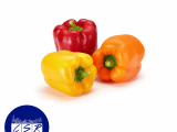 Bell Peppers x3