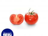 Tomato x4